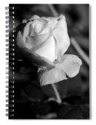 Pink Tea Rose 01 - Infrared Spiral Notebook