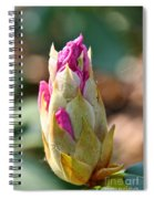 Pink Tip Spiral Notebook