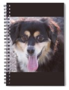Pink Tongue Spiral Notebook