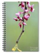 Pink Tree Flower Buds Spiral Notebook