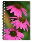 Pink Trifecta Spiral Notebook