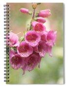 Pink Trumpet Spiral Notebook