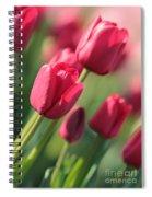 Pink Tulip Dream Spiral Notebook