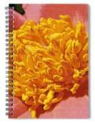 Pink Tulip Peony Spiral Notebook