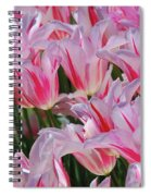 Pink Tulips 3 Spiral Notebook
