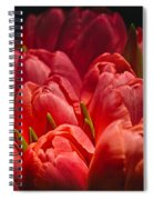 Fucshia Tulips Spiral Notebook