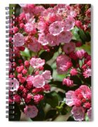 Pink Umbrellas Spiral Notebook
