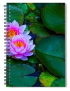 Pink Water Lilies - Lotus Spiral Notebook