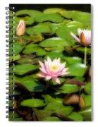 Pink Water Lilies Soft Focus Spiral Notebook