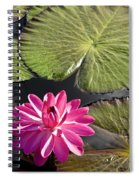 Pink Water Lily II Spiral Notebook