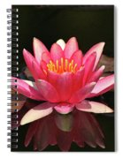 Pink Waterlily Spiral Notebook