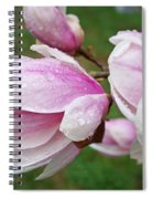 Pink White Wet Raindrops Magnolia Flowers Spiral Notebook