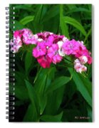 Pink Willie Spiral Notebook