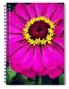 Pink Zinnia Spiral Notebook