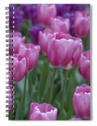Pinks And Purples Spiral Notebook