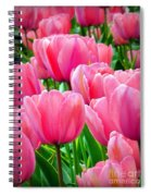 Pinks My Color Spiral Notebook