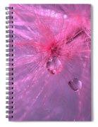 Pinky Dream Spiral Notebook