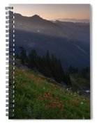 Pinnacle Saddle View Out Back Spiral Notebook