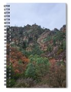Pinnacles National Park Spiral Notebook