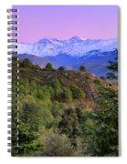Pinsapar At Sierra Nevada Spiral Notebook