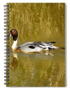 Pintail Duck Spiral Notebook