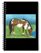 Pinto Mustang Horse Mare Farm Ranch Animal Art Spiral Notebook