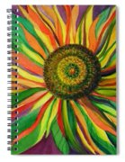 Pinwheel Spiral Notebook