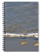 Pipers Spiral Notebook