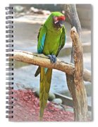 Pirate's Pal Spiral Notebook
