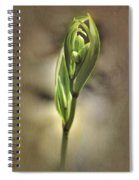 Pirouette Spiral Notebook
