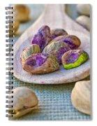 Pistachio Spiral Notebook