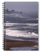 Pistol River Beach Spiral Notebook