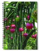 Pitaya Fruit Trees Spiral Notebook