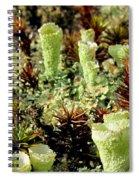 Pixie Cup Lichenscape Spiral Notebook