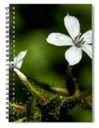 Pixie Flower Spiral Notebook