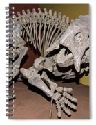 Placerias Fossil Spiral Notebook
