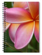 Places Of The Heart Spiral Notebook