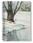 Placid Winter Morning Spiral Notebook