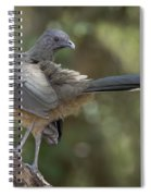 Plain Chachalaca Spiral Notebook