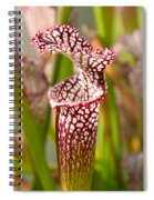 Plant - Pretty As A Pitcher Plant Spiral Notebook