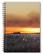 Plant Rd Lacassine Nwr Louisiana Spiral Notebook