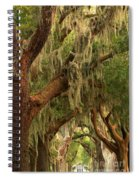Plantation Oak Trees Spiral Notebook
