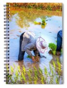 Planting Rice Spiral Notebook
