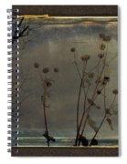 Urban Grunge Nature Spiral Notebook