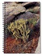 Plants On A Landscape, Anza Borrego Spiral Notebook