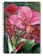 Plastic Wrapped Pink Flower By Diana Sainz Spiral Notebook