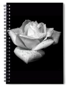 Platinum Rose Flower Spiral Notebook