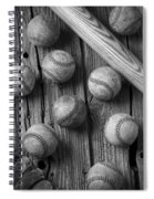Play Ball Spiral Notebook