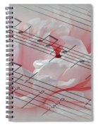 Play It Softly Spiral Notebook