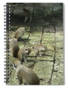 Green Monkey Play Time Spiral Notebook